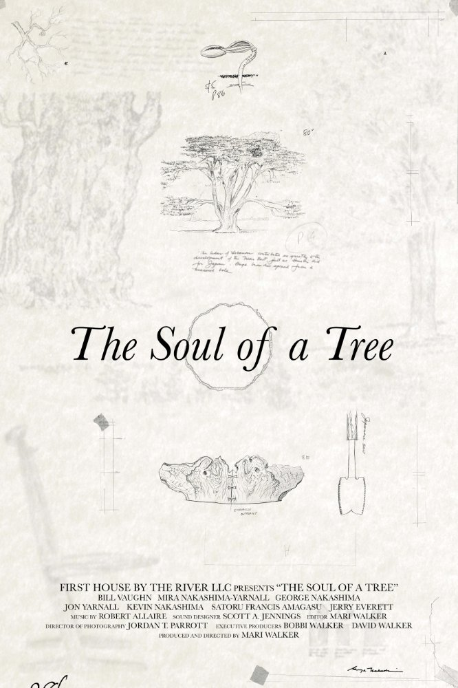the-soul-of-a-tree